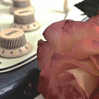 Avalon Bride Music - Solo Musician , Durham, Singer , Durham,  Violinist, Durham Wedding Singer, Durham Cellist, Durham Guitarist, Durham Pianist, Durham Live Solo Singer, Durham Classical Guitarist, Durham