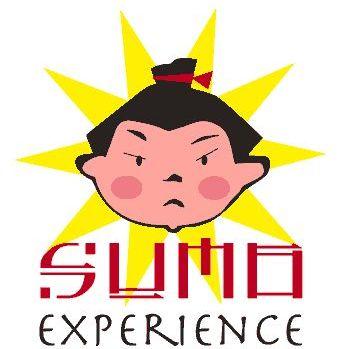 Sumo Experience Parties Sumo Suits