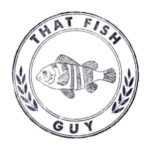 That Fish Guy Business Lunch Catering