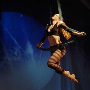Daisy Vincent Aerialist