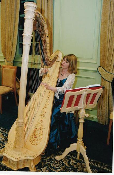 Oxfordshire Harpist - Solo Musician  - Oxford - Oxfordshire photo