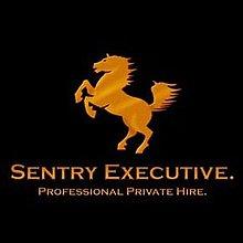 Sentry Executive Chauffeur Driven Car