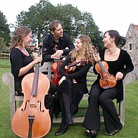 Magenta Strings String Quartet