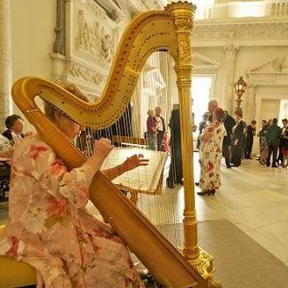 Harp Heaven Harpist