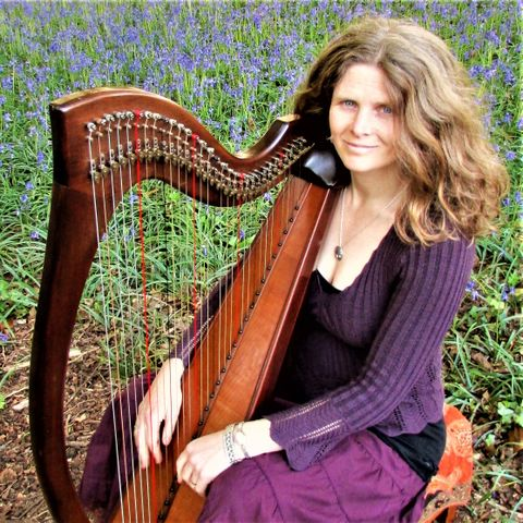 Fionnuala Perry Celtic Harpist - Solo Musician , Plymouth,  Harpist, Plymouth