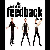 Fabulous Feedback Band Rock And Roll Band