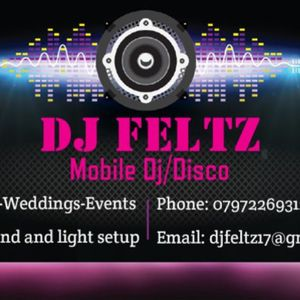 Mobile/Club DJ    (DJ Feltz) Wedding DJ