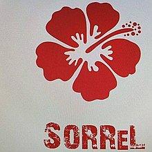 Sorrel Cafe Street Food Catering