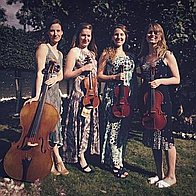 The Hummingbird Quartet String Quartet