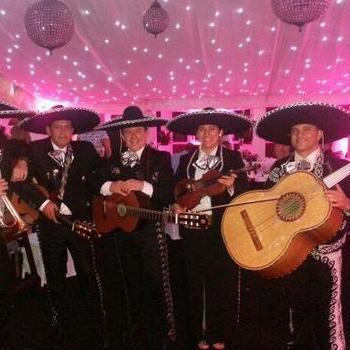 Mariachi Rey Mariachi Band