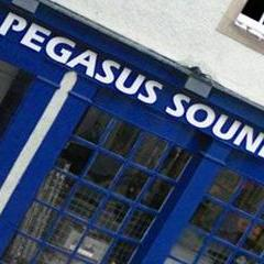 Pegasus Smoke Machine