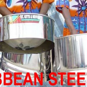 You Can Book ANY Of These Live Show: Caribbean Steel Band, or DJ with Lights, or Bongo Player, or Audience Participation Fun Limbo Dancing - Live music band , Birmingham, Dance Act , Birmingham, World Music Band , Birmingham,  Function & Wedding Band, Birmingham Steel Drum Band, Birmingham Latin & Salsa Band, Birmingham Live Music Duo, Birmingham Disco Band, Birmingham Reggae Band, Birmingham Dance show, Birmingham Dance Troupe, Birmingham Dance Instructor, Birmingham Dance Master Class, Birmingham Festival Style Band, Birmingham