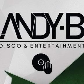 Andy B Mobile Disco & Entertainment Wedding DJ