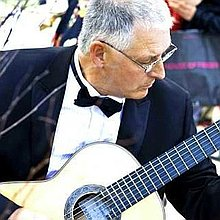 Guitarist Peter Richardson Solo Musician