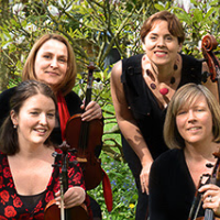 Salisbury String Quartet - Ensemble , Hertfordshire,  String Quartet, Hertfordshire