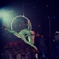 Anna Waters Performer Aerialist
