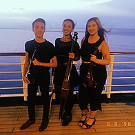 Sapphire String Trio String Quartet