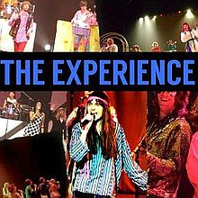 The Experience 60s Band