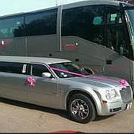 Passion Limos Wedding car