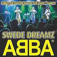 ABBA Tribute Band Swede Dreamz Tribute Band