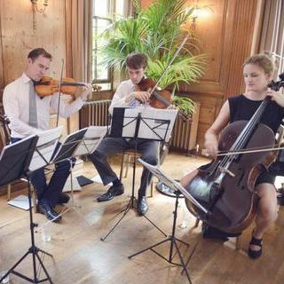 Liquid Strings String Quartet