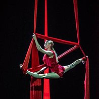 Gravity circus Centre Contortionist