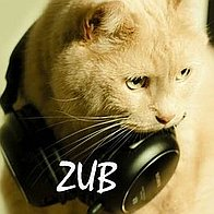 ZUB Function Music Band
