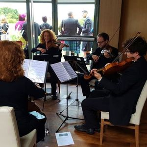 The Quartet String Quartet
