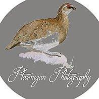 Ptarmigan Photography Wedding photographer