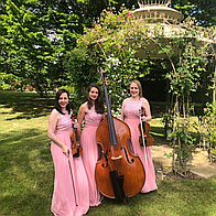 Exclusive Blue Topaz String Trio Acoustic Band