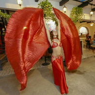 Red Glass Sky Entertainment Belly Dancer