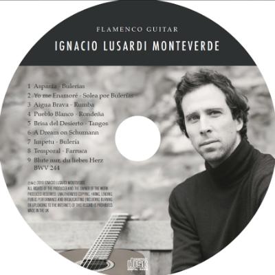 Flamenco Guitar - Ignacio Lusardi Monteverde Guitarist