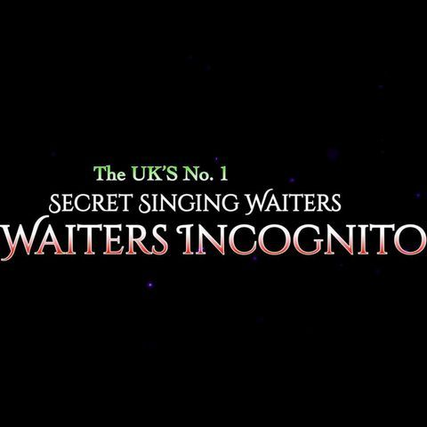 Waiters Incognito - Singer , West Yorkshire,  Wedding Singer, West Yorkshire Singing Waiters, West Yorkshire