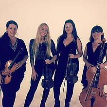 Echo String Quartet Ensemble