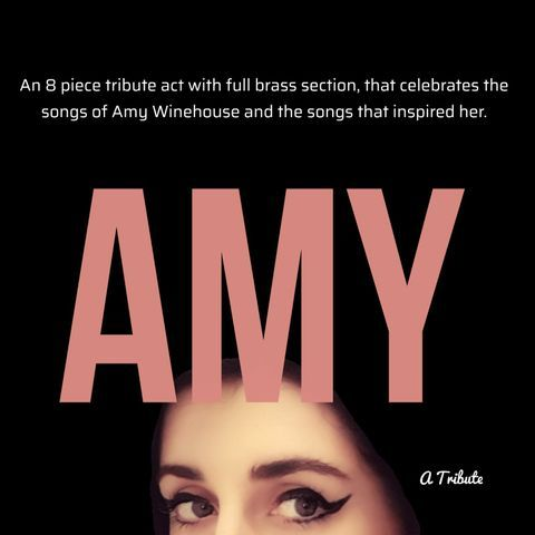 Amy A Tribute Singer