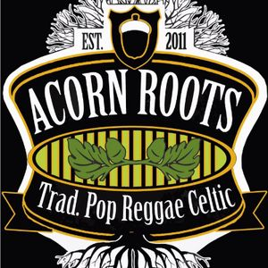 Acorn Roots Function & Wedding Music Band