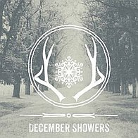 December Showers Wedding Music Band