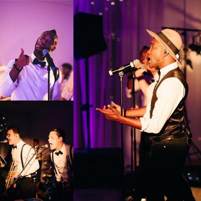 SALUT - Live music band Ensemble  - London - Greater London photo
