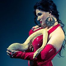 Bellydancer-Snakecharmer Caitlyn Circus Entertainment