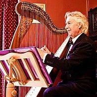 Harpjohn Solo Musician