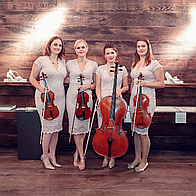 Maple Rose Strings String Quartet