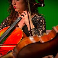 Musicians Ensemble