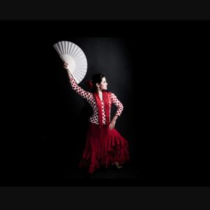 Canela Fina! Latin & Flamenco Dancer