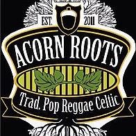 Acorn Roots Folk Band