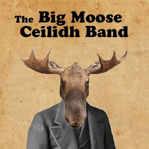 The Big Moose Ceilidh Band Folk Band