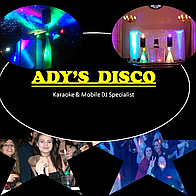 Adys Disco Wedding DJ