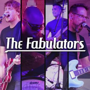 The Fabulators Live music band