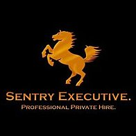 Sentry Executive Chauffeur Driven Car