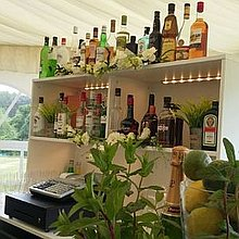 The Guzzling Gander - Events Bars Mobile Bar