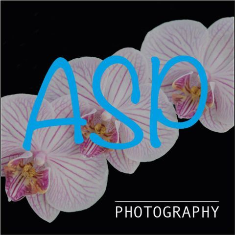 ASP Photography Event Photographer